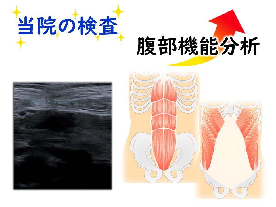しっかり検査―腹部機能分析 三田市・神戸市・西宮市から多数ご来院の産後骨盤矯正mamaNEXT